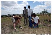 Посадить дерево / Эфиопия