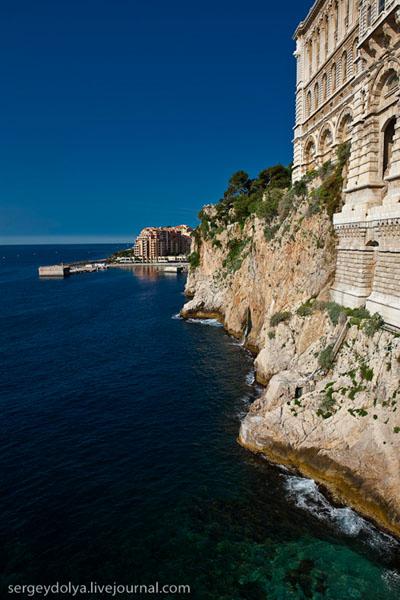 В Старом городе расположен Океанографический музей / Фото из Монако
