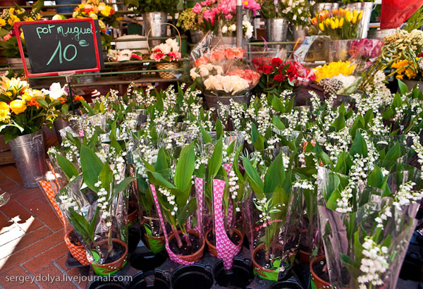 Ландыши на продажу / Фото из Монако