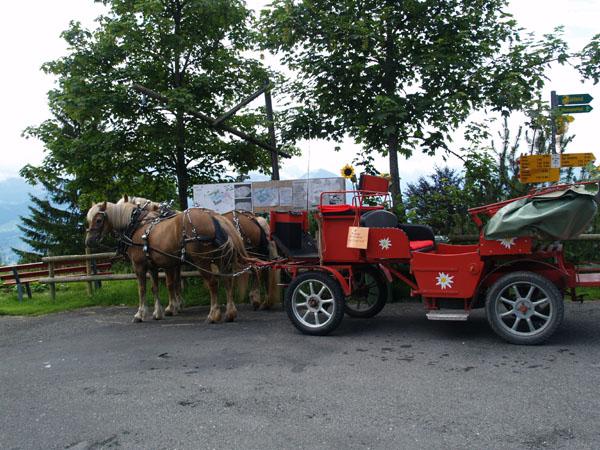 Повозки с лошадьми - тоже популярный швейцарский транспорт / Фото из Швейцарии