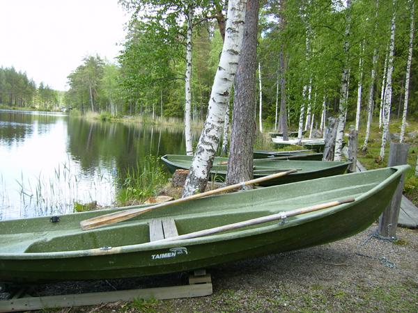 Природа Хяме - его главное богатство / Фото из Финляндии