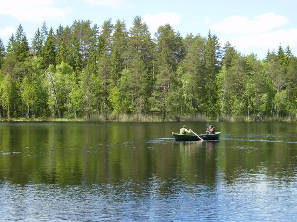 Хяме - край чистейших голубых озер / Фото из Финляндии