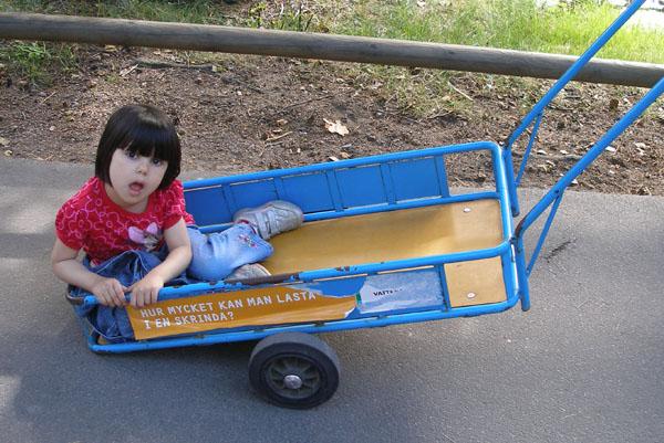 Тележка, запряженная родителями, - отличное транспортное средство / Фото из Швеции