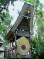 Современный саркофаг / Индонезия