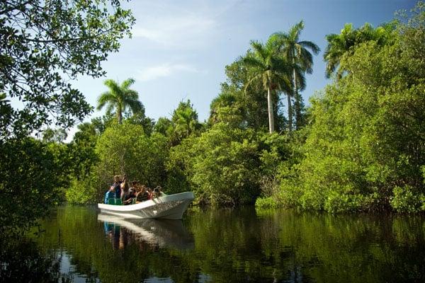 По реке Атигуанико можно сплавиться на лодке или каяках / Фото с Кубы