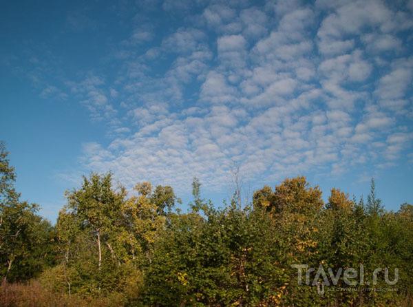 Осеннее небо над Елизово / Фото из России