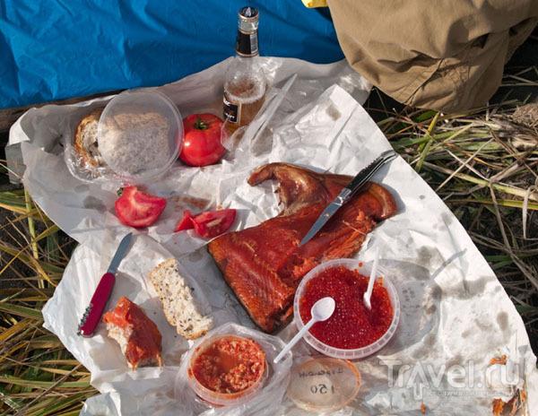 Пикник по-камчатски / Фото из России