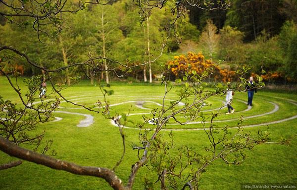 """""""Лабиринт"""" в парке Уиклоу, Ирландия / Фото из Ирландии"""