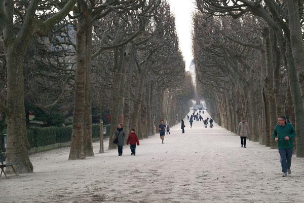 Снежные зимы в Париже - редкость / Фото из Франции