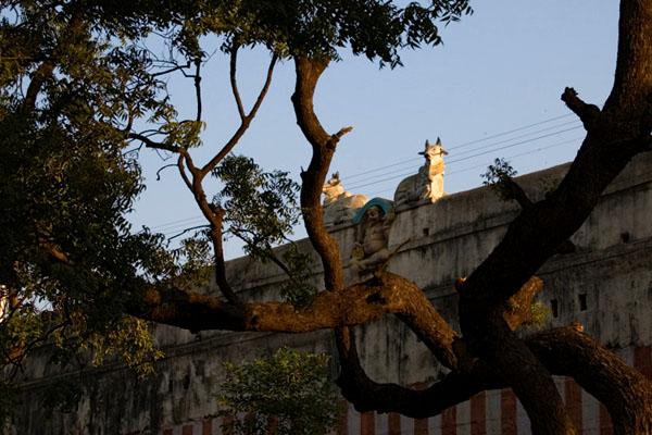 Храм в Мадурае окружают высокие стены, Индия / Фото из Индии