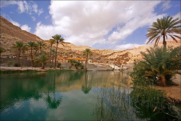 Райский оазис в горах Омана / Фото из Бахрейна