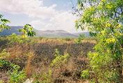 Лавовые поля в р-не вулкана Масая / Никарагуа