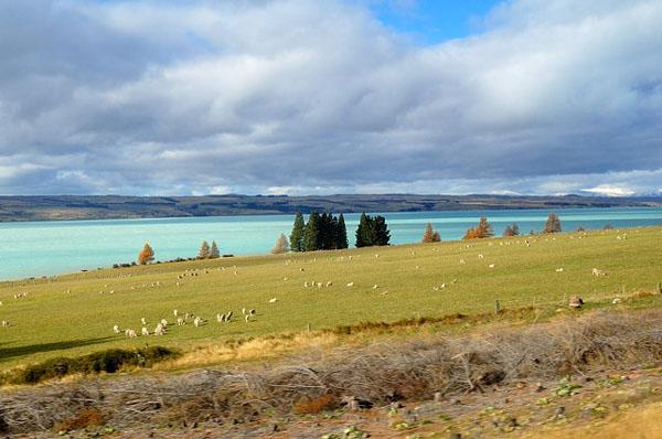 Пейзажи Новой Зеландии / Фото из Новой Зеландии