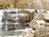 Далматинец Граф засмотрелся на водопады горной речки Хачахпюр / Армения