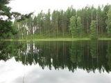 Берег озера / Финляндия