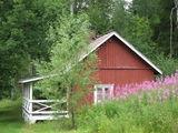 Коттедж / Финляндия