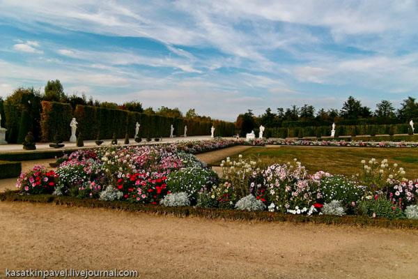 Живописный уголок в парке Версаля / Фото из Франции