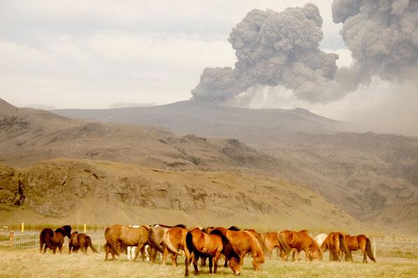 Извержение вулкана Эйяфьятлаекюдль преобразило пейзажи Исландии / Фото из Исландии