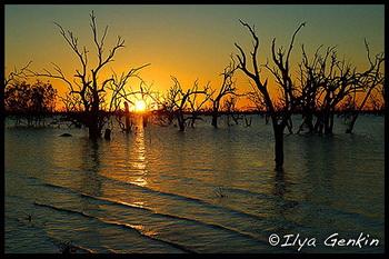 Парк Кинчега / Австралия