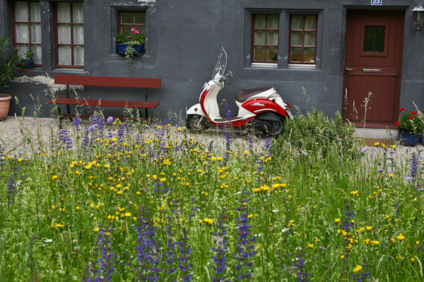 Мотороллер и цветущий луг / Фото из Швейцарии