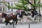 Транспорт для уставших туристов / Белоруссия