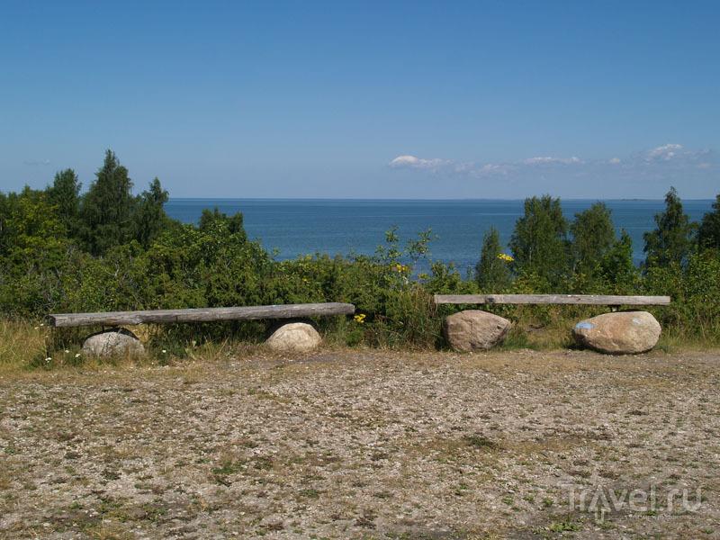 Обрыв Üügu на северном берегу острова Муху / Фото из Эстонии