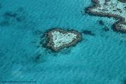 Кораллы / Австралия