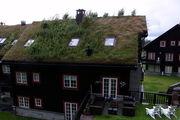 Окна на крыше / Норвегия