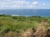Атлантическое побережье Барбадоса / Барбадос