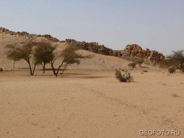 В пустыне Байюда / Фото из Судана