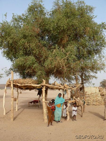 Кочевники бишарин / Фото из Судана