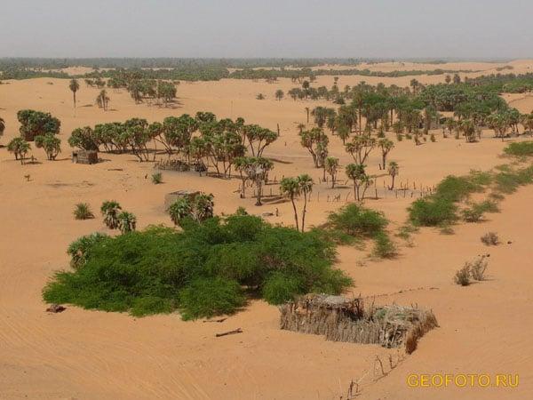 Крепость и оазис Абкур / Фото из Судана