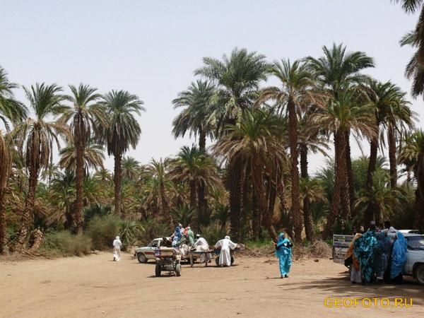У переправы через Нил / Фото из Судана