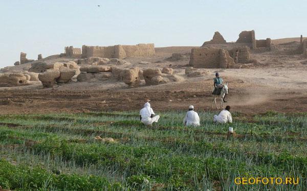 Остров Саи на Ниле / Фото из Судана