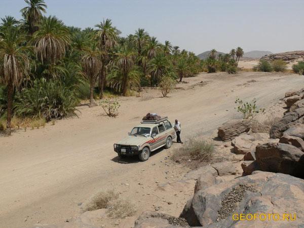 В долине петроглифов / Фото из Судана
