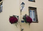 Цветы на фасадах / Франция
