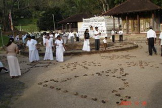 Канди / Шри-Ланка