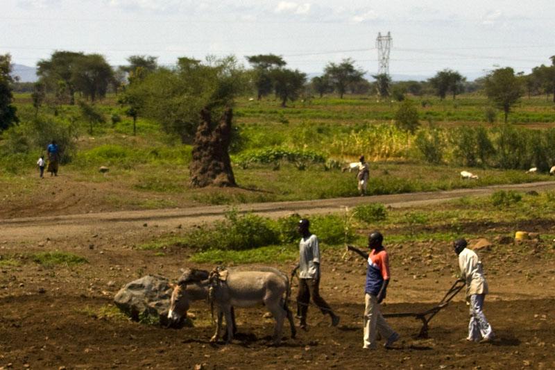 Местные жители, Танзания / Фото из Танзании