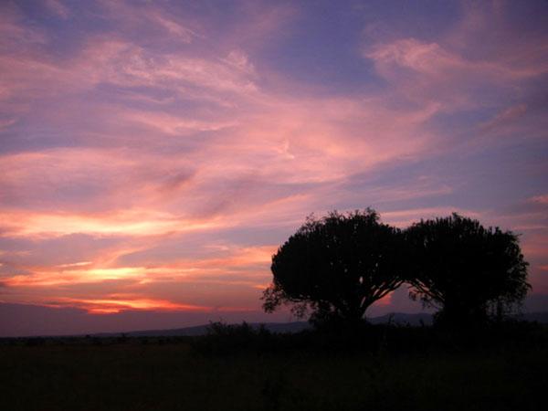 Закат в Африке / Фото из Конго (бывш. Заир)