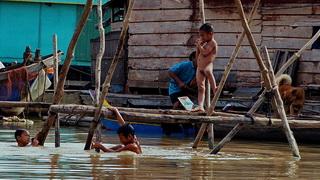 Живность тоже имеется / Камбоджа