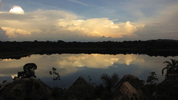 Национальный парк Ясуни / Фото из Эквадора
