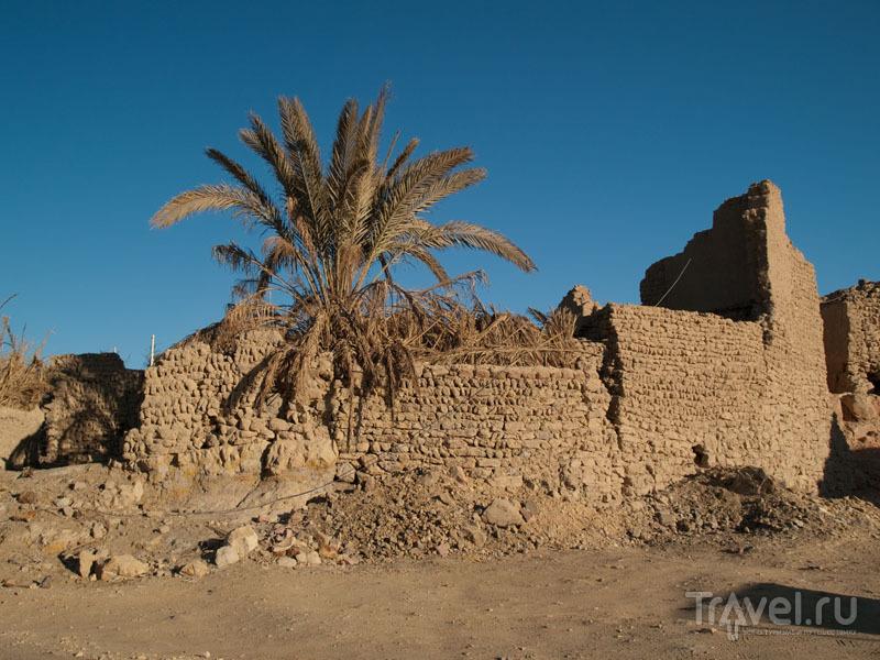 Старые и заброшенные районы Бавити / Фото из Египта