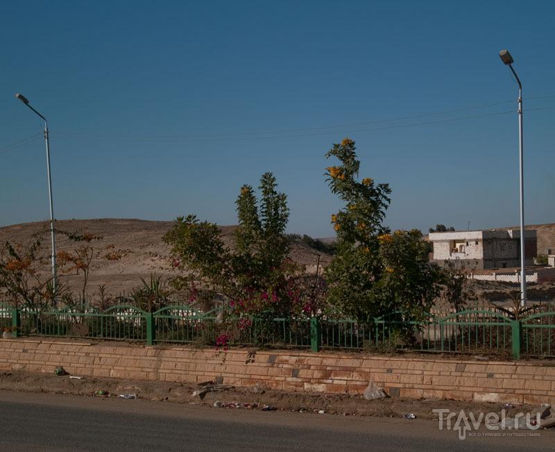 Главная дорога в оазисе Фарафра / Фото из Египта
