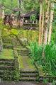 Совершенно дикие уголки / Индонезия