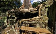 Небольшой деревянный мостик / Камбоджа