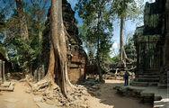 Храм Та Пром / Камбоджа