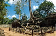 Напоминает лабиринт / Камбоджа