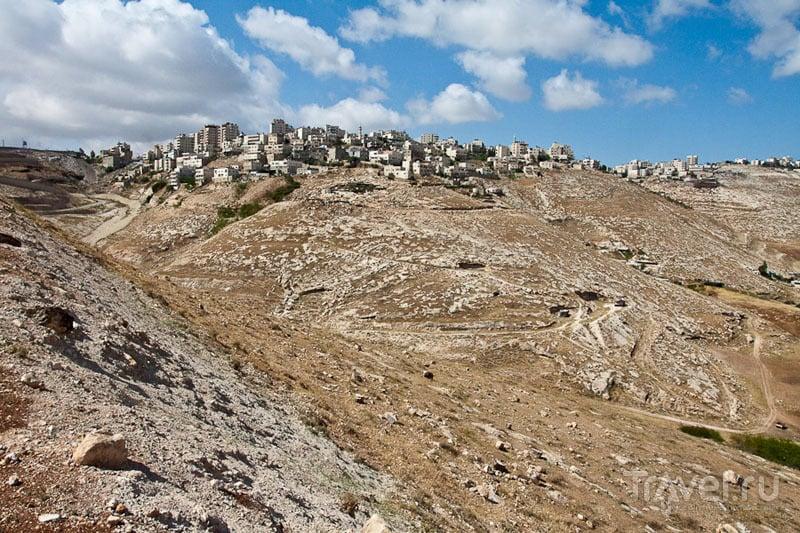 Окрестности Иерусалима / Фото из Палестины