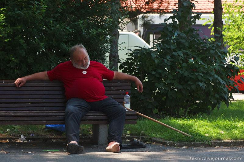 Житель Земуна / Фото из Сербии