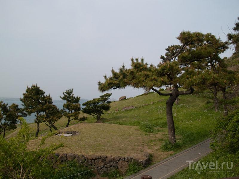 Природа вокруг вулкана Сонсан  / Фото из Южной Кореи